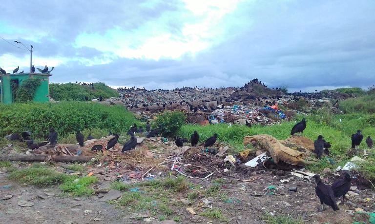 MPAM exige que Prefeitura de Parintins resolva o problema dos lixões a céu aberto