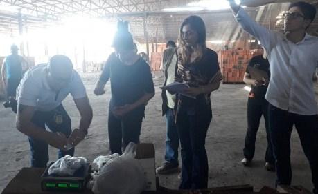 Polícia Civil incinera 3,5 kg de entorpecentes em Parintins