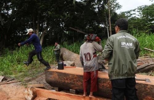 Materiais apreendidos pelo Ipaam podem ser doados para instituições filantrópicas