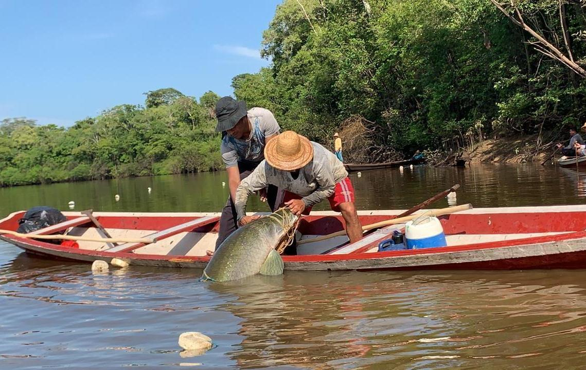Piscicultura e pesca entre as prioridades do Governo do Amazonas