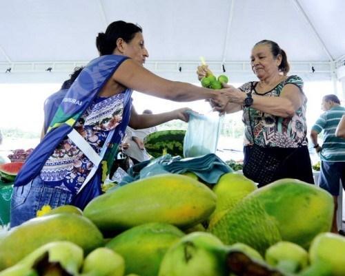 Governo lança projeto 'Nossa Terra' e promove Feira de Produtos Regionais e Orgânicos, no Aleixo