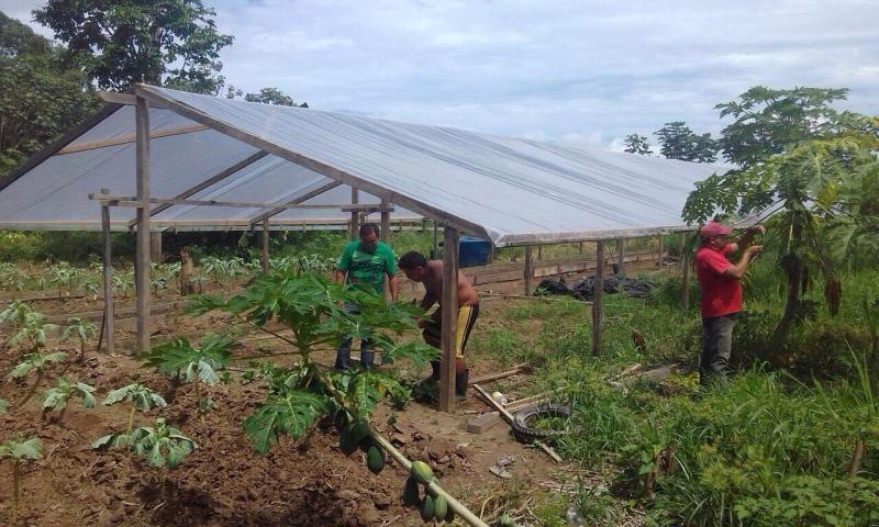 Ações de Assistência Técnica e Extensão Rural serão ampliadas em Parintins