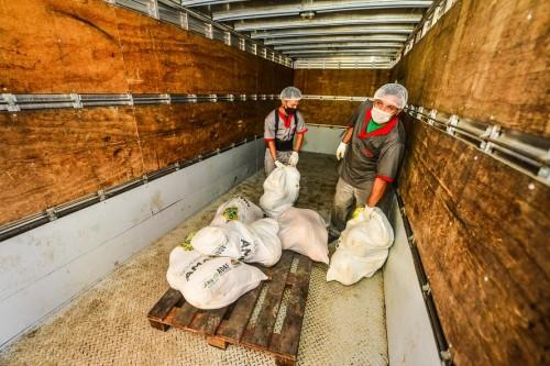 Governo do Estado doa mais 86 toneladas de alimentos e 70 toneladas de peixe para 150 instituições sociais