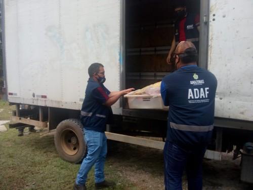 Adaf apreende 2,3 toneladas de alimentos vencidos
