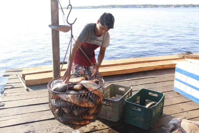 Sepror orienta pescadores de Tefé para acesso a financiamento