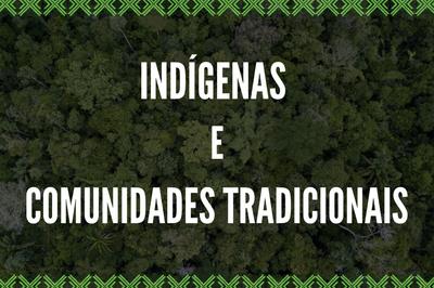 MPF pede atuação da Polícia Federal na proteção a indígenas e ribeirinhos da região do rio Abacaxis (AM)
