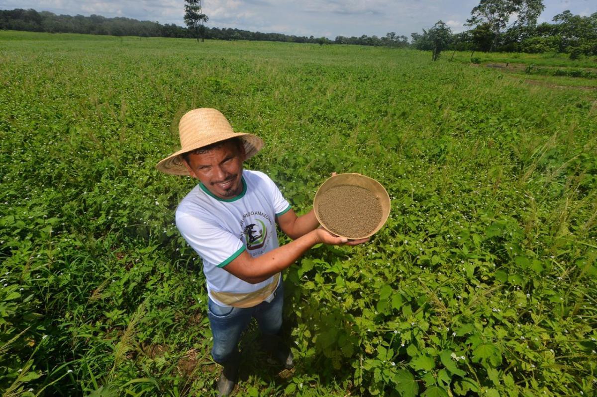 Governo do Amazonas expande trabalho de juticultores