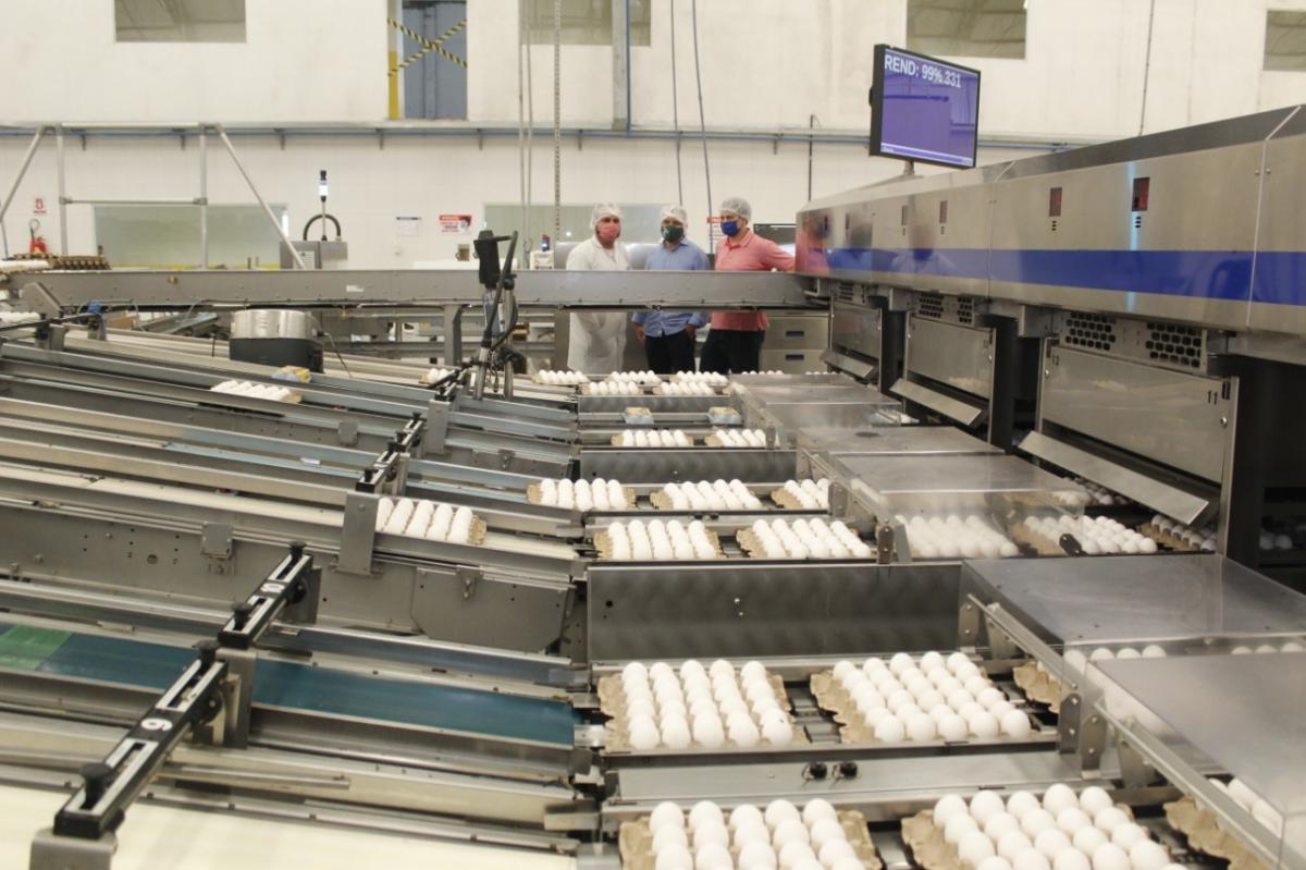 Sepror comemora crescimento da produção de ovos no Amazonas