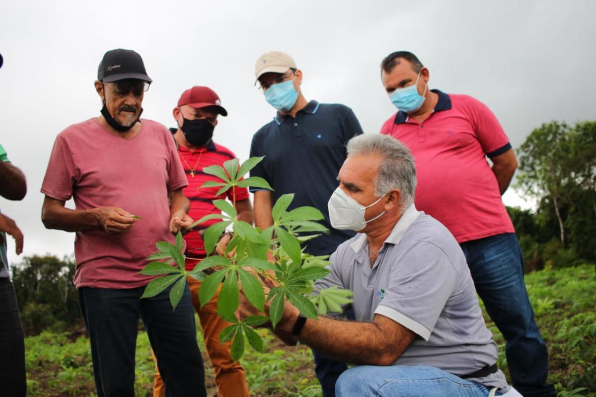Prefeitura de Parintins incentiva plantio biodiverso no Caburi