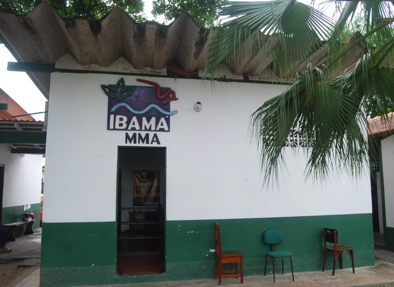 Ibama (1)